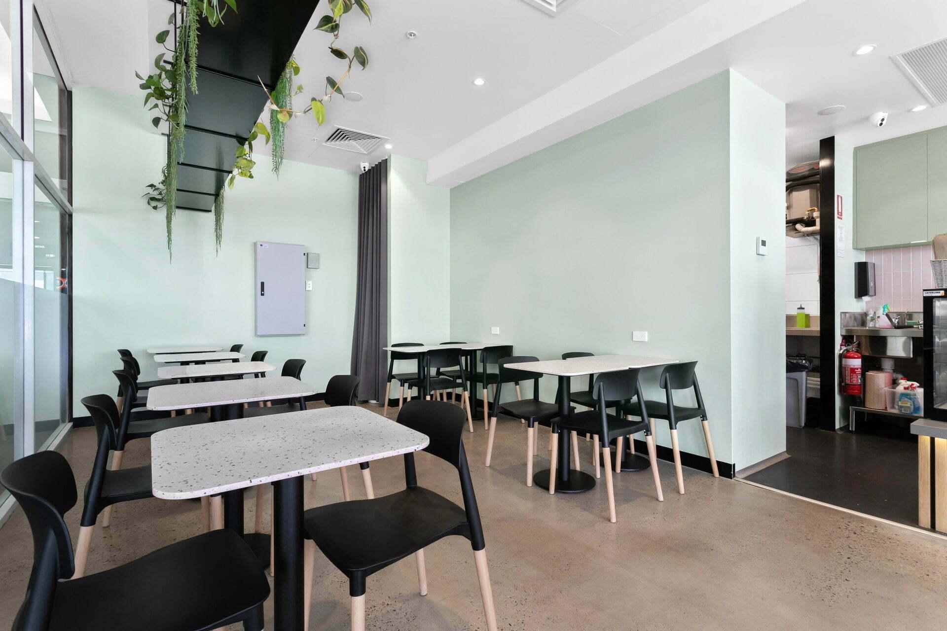 WEB Husky Cafe 01